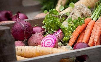 Vida saludable con verduras al Big Green Egg